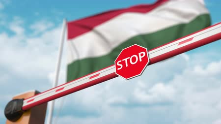 authorise : Open boom gate on the Hungarian flag background. Free entry or lifting a ban in Hungary Stock Footage