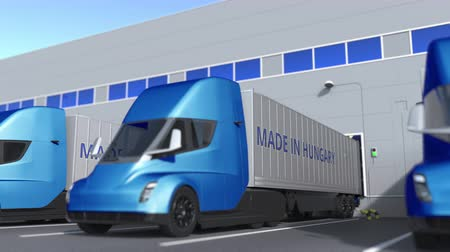 treyler : Modern semi-trailer trucks with MADE IN HUNGARY text being loaded or unloaded at warehouse. Hungarian business related loopable 3D animation