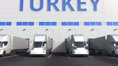 capacidade : Trailer trucks at warehouse loading dock with PRODUCT OF TURKEY text. Turkish logistics related 3D animation Stock Footage