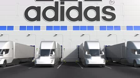 rakomány : Electric semi-trailer trucks at warehouse loading bay with ADIDAS logo on the wall. Editorial 3D animation Stock mozgókép