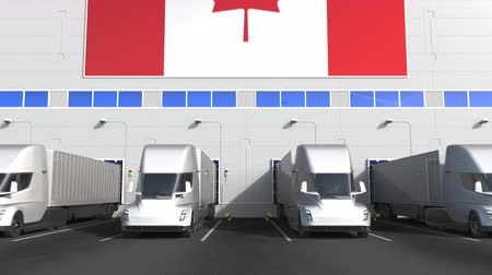canadense : Electric semi-trailer trucks at warehouse loading dock with flag of CANADA. Canadian logistics related conceptual 3D animation Stock Footage