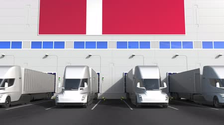 disposição : Electric semi-trailer trucks at warehouse loading dock with flag of DENMARK. Danish logistics related conceptual 3D animation Stock Footage
