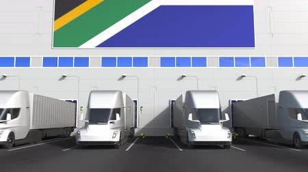 storing : Modern trailer trucks load or unload at warehouse bays with flag of SOUTH AFRICA. logistics related conceptual 3D animation