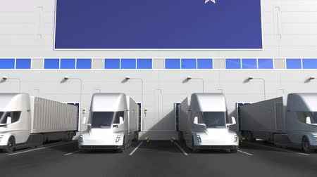 disposição : Trailer trucks at warehouse loading dock with flag of NEW ZEALAND. logistics 3D animation Stock Footage