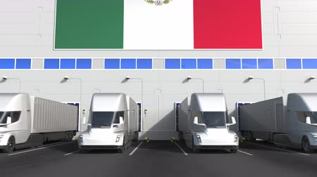 disposição : Electric semi-trailer trucks at warehouse loading dock with flag of MEXICO. Mexican logistics related conceptual 3D animation Stock Footage