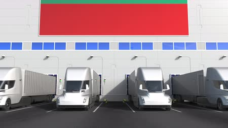 unload : Trailer trucks at warehouse loading dock with flag of BULGARIA. Bulgarian logistics related conceptual 3D animation Stock Footage