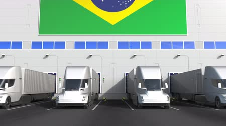 brazilian : Modern trailer trucks load or unload at warehouse docks with flag of BRAZIL. Brazilian logistics related conceptual 3D animation