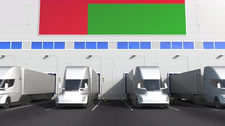 disposição : Trailer trucks at warehouse loading bay with flag of OMAN. Omani logistics related conceptual 3D animation Stock Footage