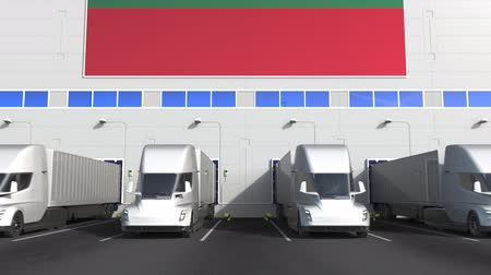 flag of lithuania : Trucks at warehouse loading dock with flag of LITHUANIA. Lithuanian logistics related conceptual 3D animation