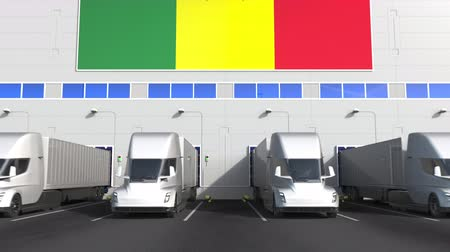 unload : Trailer trucks at warehouse loading dock with flag of SENEGAL. Senegalese logistics related conceptual 3D animation