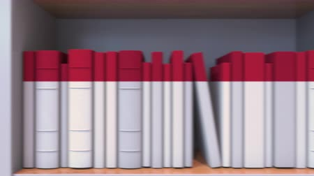 knihkupectví : Books make up the Danish flag. Literature or science in Denmark