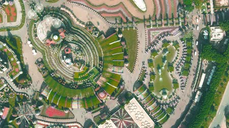 посетитель : DUBAI, UNITED ARAB EMIRATES - DECEMBER 31, 2019. Aerial top-down shot of the Dubai Miracle Garden with airliner flower structure Стоковые видеозаписи