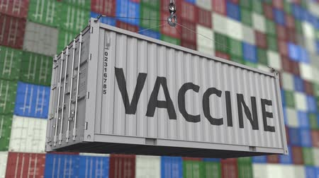 container terminal : Loading container with VACCINE text. Looping 3D animation Stock Footage