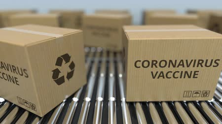 доставлять : Cartons with CORONAVIRUS VACCINE move on roller conveyors. Looping 3D animation