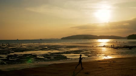 Jogging on a tropical beach at sunset. Stock Footage