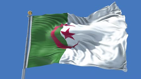 algeria : Algeria animated flag in the wind with blue sky in the background, green screen, blue screen or isolated background and the flag on the full background, all in one animated flag pack.