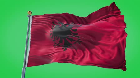 albanie : Albania animated flag in the wind with blue sky in the background, green screen, blue screen or isolated background and the flag on the full background, all in one animated flag pack. Stockvideo