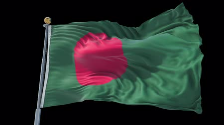 Bangladesh animated flag in the wind with blue sky in the background, green screen, blue screen or isolated background and the flag on the full background, all in one animated flag pack.