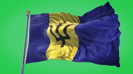 Barbados animated flag in the wind with blue sky in the background, green screen, blue screen or isolated background and the flag on the full background, all in one animated flag pack.