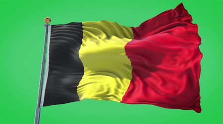 Belgium animated flag in the wind with blue sky in the background, green screen, blue screen or isolated background and the flag on the full background, all in one animated flag pack.