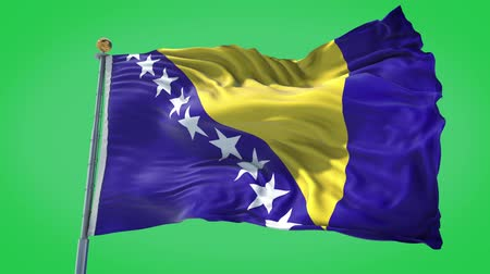 Bosnia and Herzegovina animated flag in the wind with blue sky in the background, green screen, blue screen or isolated background and the flag on the full background, all in one animated flag pack. Stock Footage