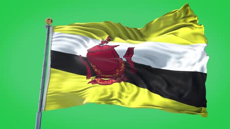Brunei animated flag in the wind with blue sky in the background, green screen, blue screen or isolated background and the flag on the full background, all in one animated flag pack. Stock Footage