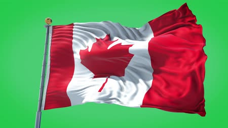 Canada animated flag in the wind with blue sky in the background, green screen background and the flag on the full background, all in one animated flag pack.