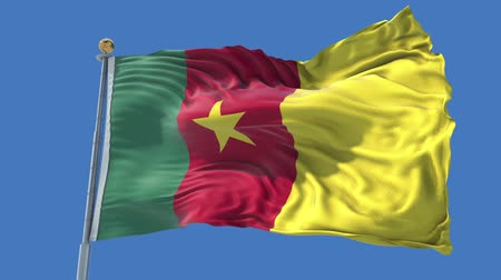 Cameroon animated flag in the wind with blue sky in the background, green screen, blue screen or isolated background and the flag on the full background, all in one animated flag pack.