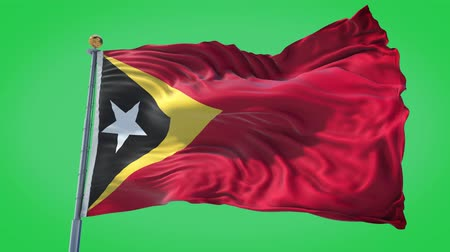 East Timor animated flag in the wind with blue sky in the background, green screen, blue screen or isolated background and the flag on the full background, all in one animated flag pack.