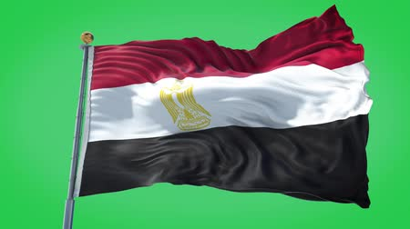 Egypt animated flag in the wind with blue sky in the background, green screen, blue screen or isolated background and the flag on the full background, all in one animated flag pack.
