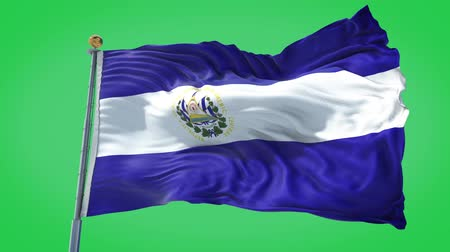 El Salvador animated flag in the wind with blue sky in the background, green screen, blue screen or isolated background and the flag on the full background, all in one animated flag pack.