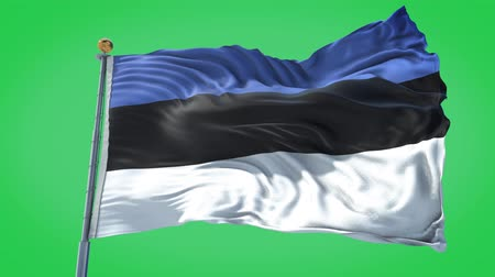 Estonia animated flag in the wind with blue sky in the background, green screen, blue screen or isolated background and the flag on the full background, all in one animated flag pack.
