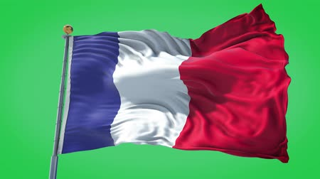 France animated flag in the wind with blue sky in the background, green screen background and the flag on the full background, all in one animated flag pack.
