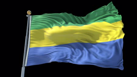 Gabon animated flag in the wind with blue sky in the background, green screen, blue screen or isolated background and the flag on the full background, all in one animated flag pack.