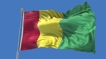 Guinea animated flag in the wind with blue sky in the background, green screen, blue screen or isolated background and the flag on the full background, all in one animated flag pack. Stock Footage