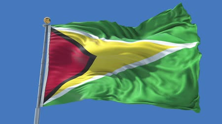 Guyana animated flag in the wind with blue sky in the background, green screen, blue screen or isolated background and the flag on the full background, all in one animated flag pack. Stock Footage