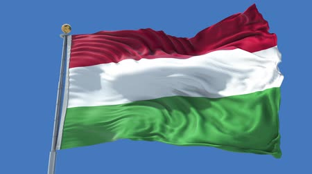 Hungary animated flag in the wind with blue sky in the background, green screen, blue screen or isolated background and the flag on the full background, all in one animated flag pack. Stock Footage