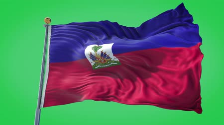 Haiti animated flag in the wind with blue sky in the background, green screen, blue screen or isolated background and the flag on the full background, all in one animated flag pack.