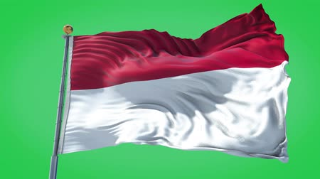 Indonesia animated flag in the wind with blue sky in the background, green screen, blue screen or isolated background and the flag on the full background, all in one animated flag pack.