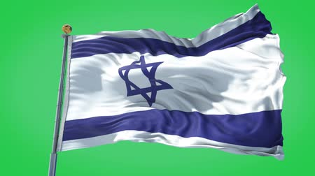 Israel animated flag in the wind with blue sky in the background, green screen background and the flag on the full background, all in one animated flag pack. Stock Footage