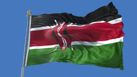 Kenya animated flag in the wind with blue sky in the background, green screen, blue screen or isolated background and the flag on the full background, all in one animated flag pack. Stock Footage