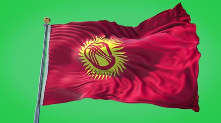 Kyrgyzstan animated flag in the wind with blue sky in the background, green screen, blue screen or isolated background and the flag on the full background, all in one animated flag pack. Stock Footage