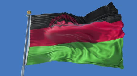 malawi : Malawi animated flag in the wind with blue sky in the background, green screen, blue screen or isolated background and the flag on the full background, all in one animated flag pack.