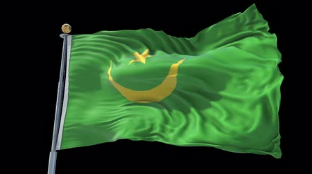 ulus : Mauritania animated flag in the wind with blue sky in the background, green screen, blue screen or isolated background and the flag on the full background, all in one animated flag pack.