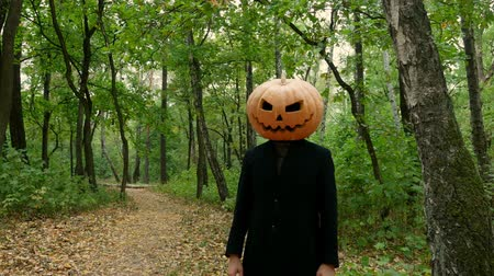 hloupý : Jack Pumpkinhead is standing in the forest, Guy puts a real pumpkin on his head. Halloween concept