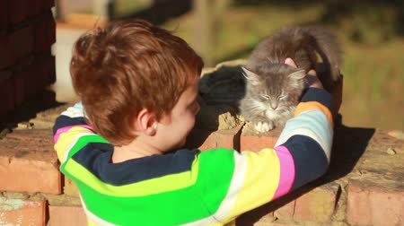 kotki : Boy playing with cat