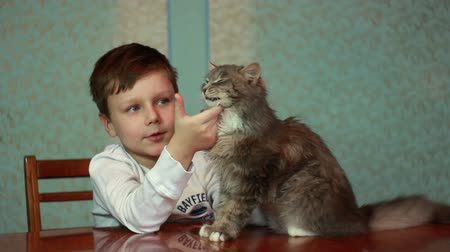 kürk : Boy playing with cat