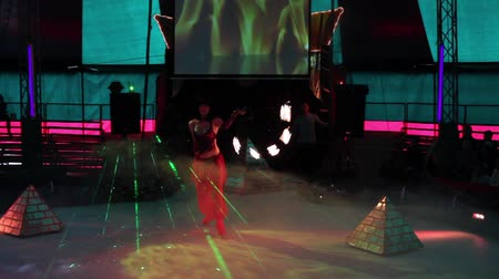 circusdieren : Circus Stockvideo