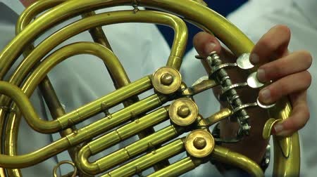 enstrüman : Mans hands playing a wind instrument Stok Video