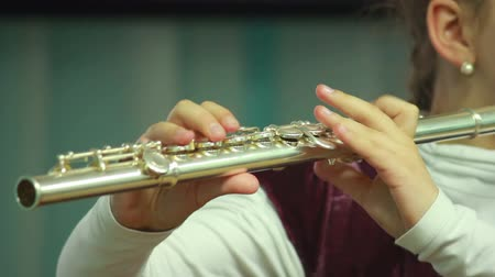 enstrümanlar : Mans hands playing a wind instrument Stok Video